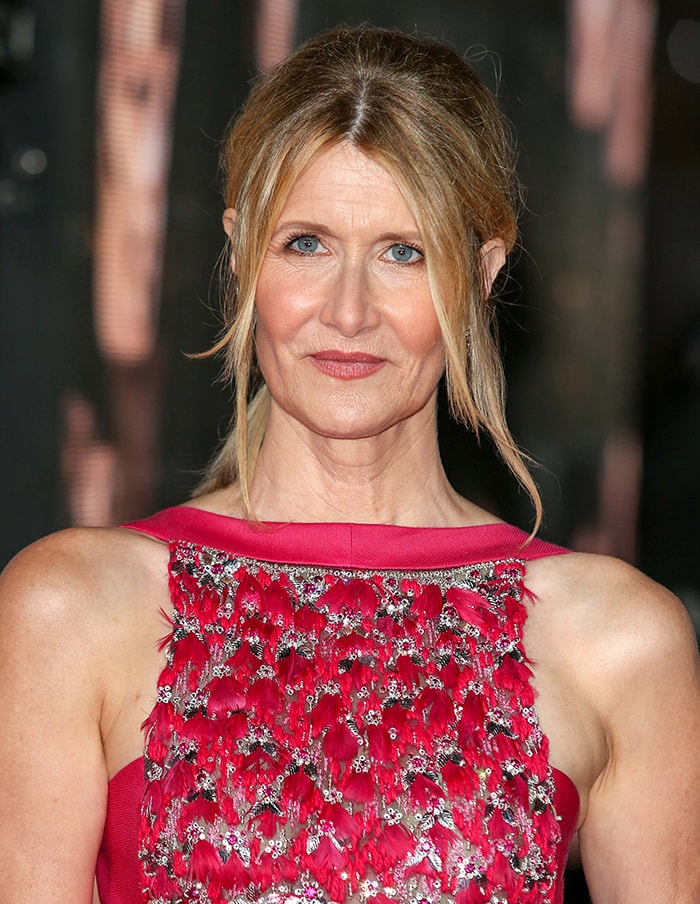 Laura Dern wears a bouffant ponytail with soft makeup