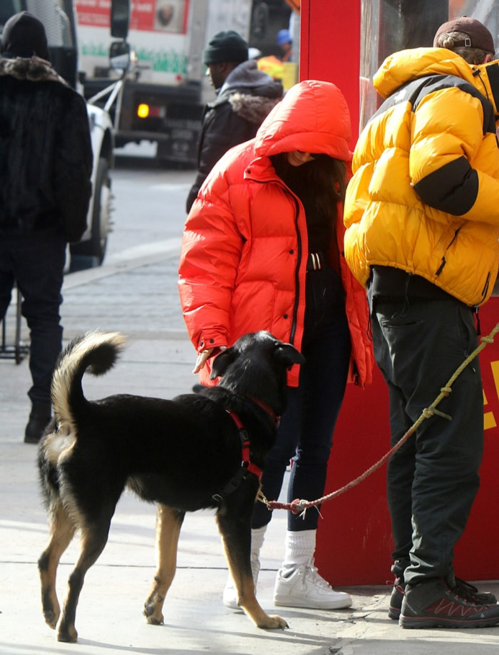 Emily Ratajkowski keeps warm in a red Ienki Ienki puffer jacket as she walks her dog in New York City on January 23, 2020