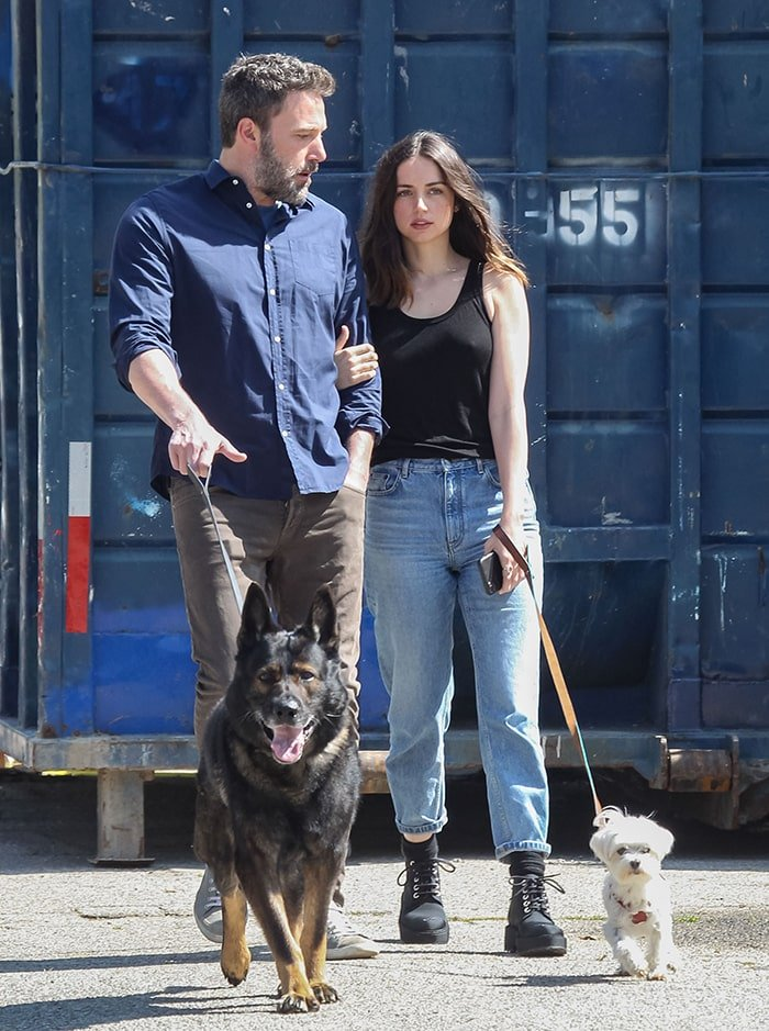 New couple Ben Affleck and Ana de Armas take their dogs out for a wal