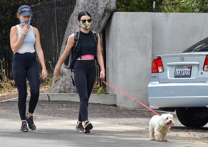 Lucy Hale walks her dog in Los Angeles