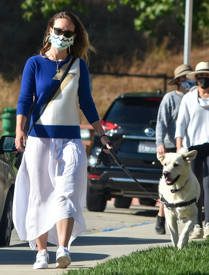 Olivia Wilde takes her dog out for a walk in Silver Lake