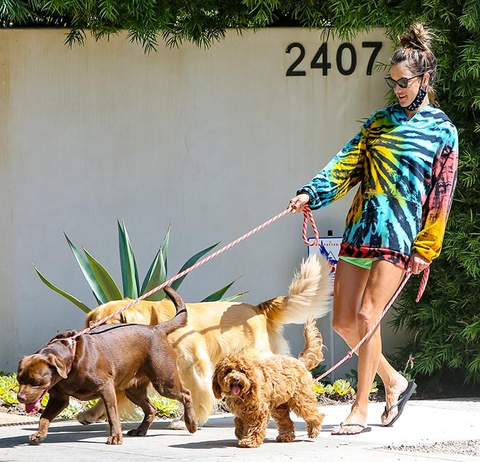 Alessandra Ambrosio walk her three dogs around Brentwood, California on July 14, 2020