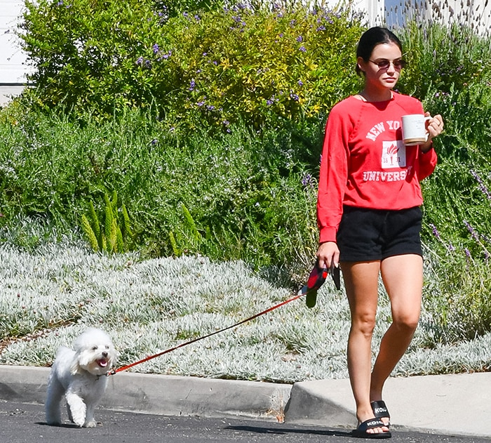 Lucy Hales holds a cup of coffee as she takes her dog out for a walk in Studio City on July 16, 2020