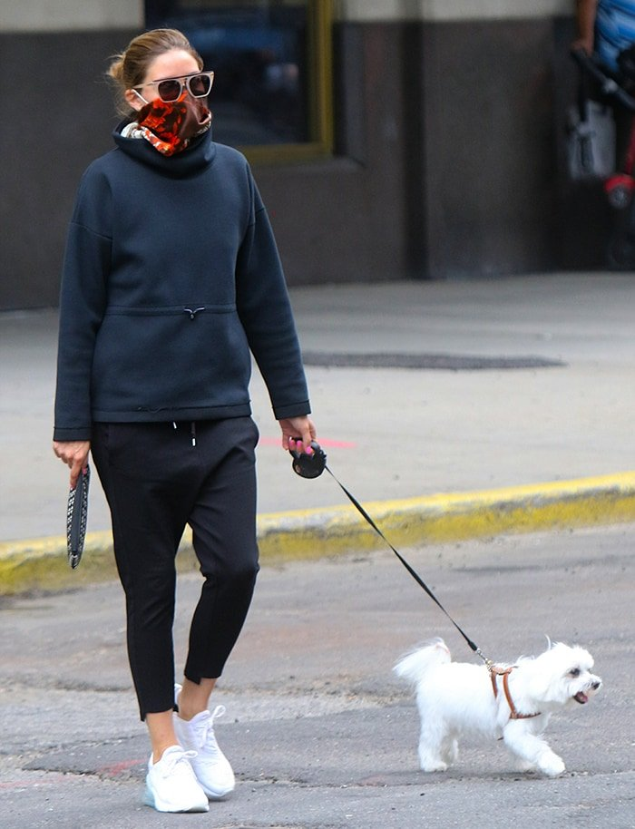 Olivia Palermo takes Mr. Butler out for a walk in an athleisure outfit in Downtown, Brooklyn