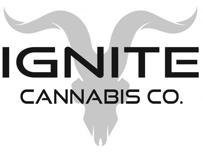 "Dan Bilzerian founded the brand as Ignite Cannabis Co. in 2017 to be a ""catalyst of change in the cannabis industry"""