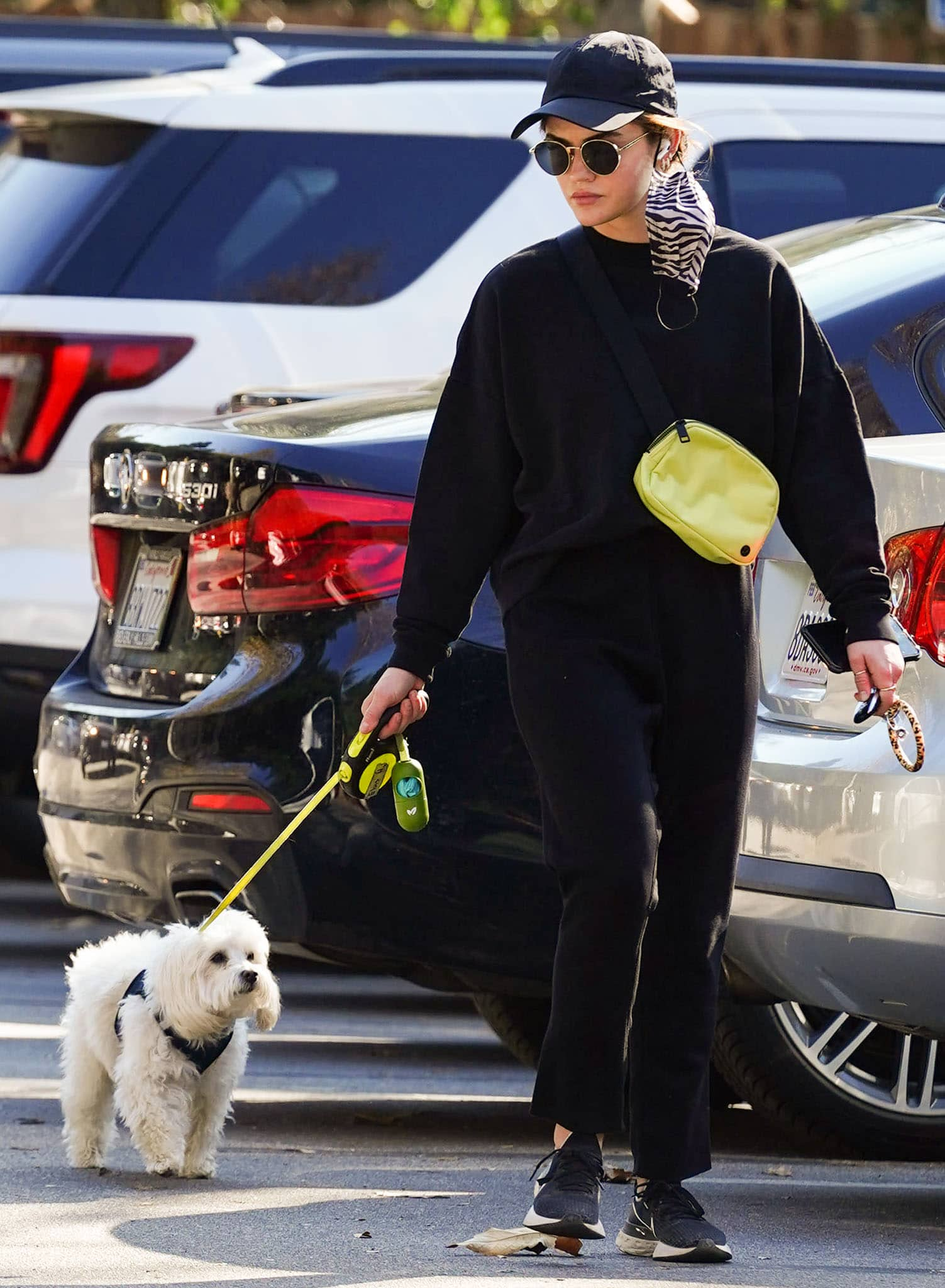 Lucy Hale takes her Maltipoo Elvis out for a walk in Tkees sweater and pants on February 4, 2021