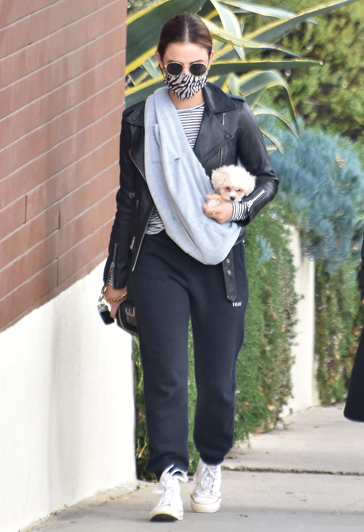 Lucy Hale cradles her newly adopted pup, Ethel, in Tribe Kelley sweatpants