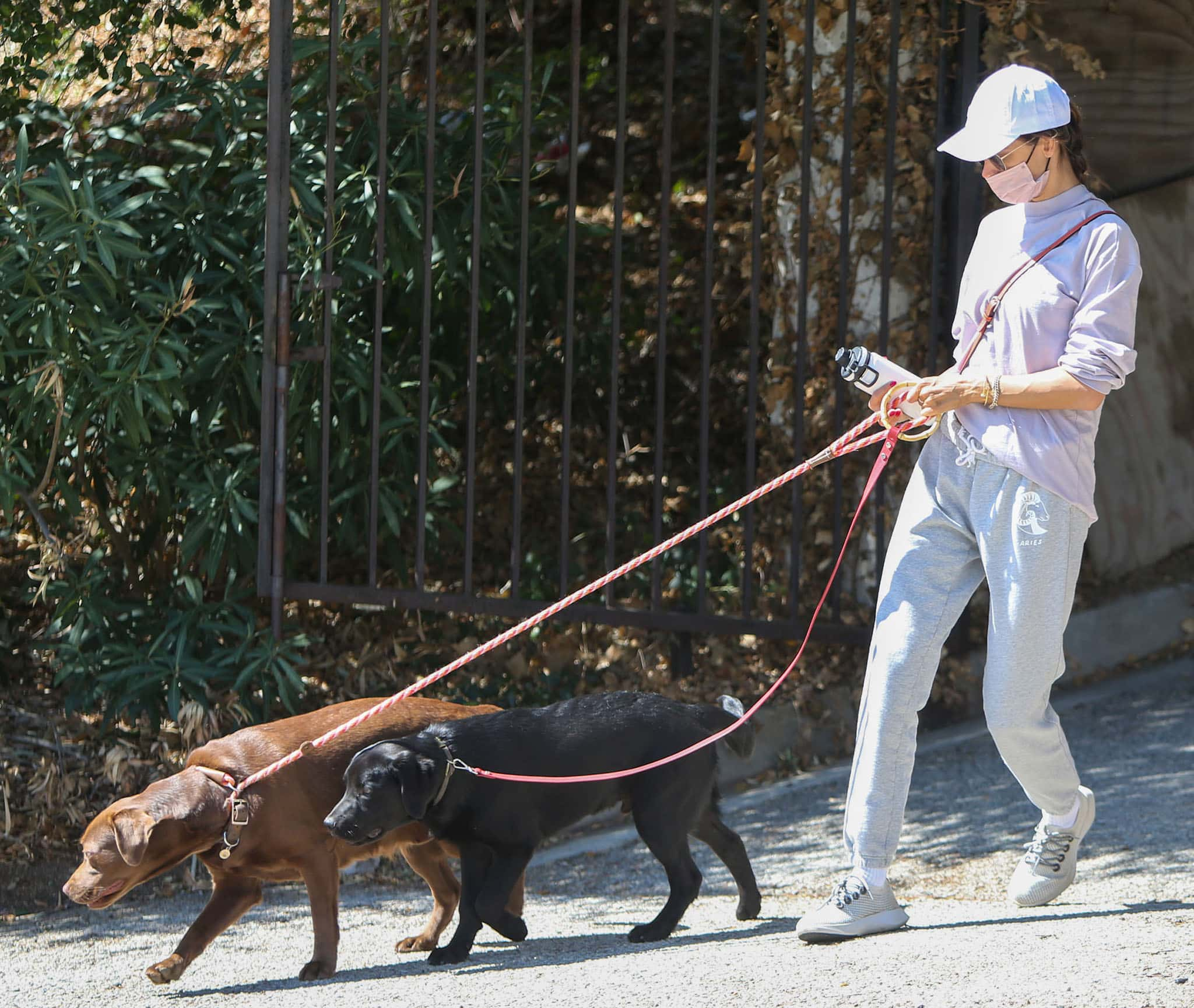 Alessandra steps out with her dogs in a lavender gray sweater and Good American sweatpants
