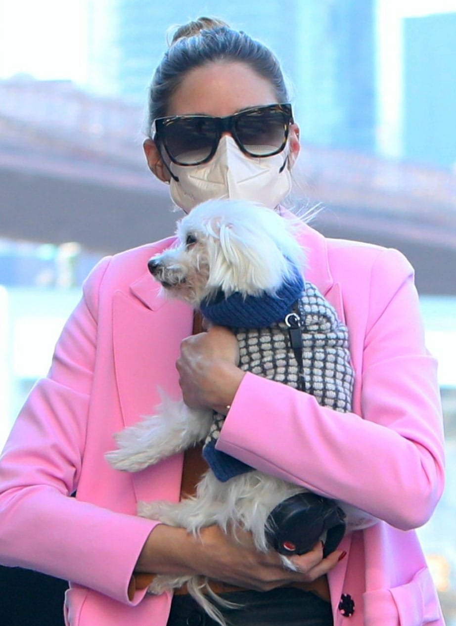 Olivia Palermo wears a white Maskc face mask as she cradles Mr. Butler