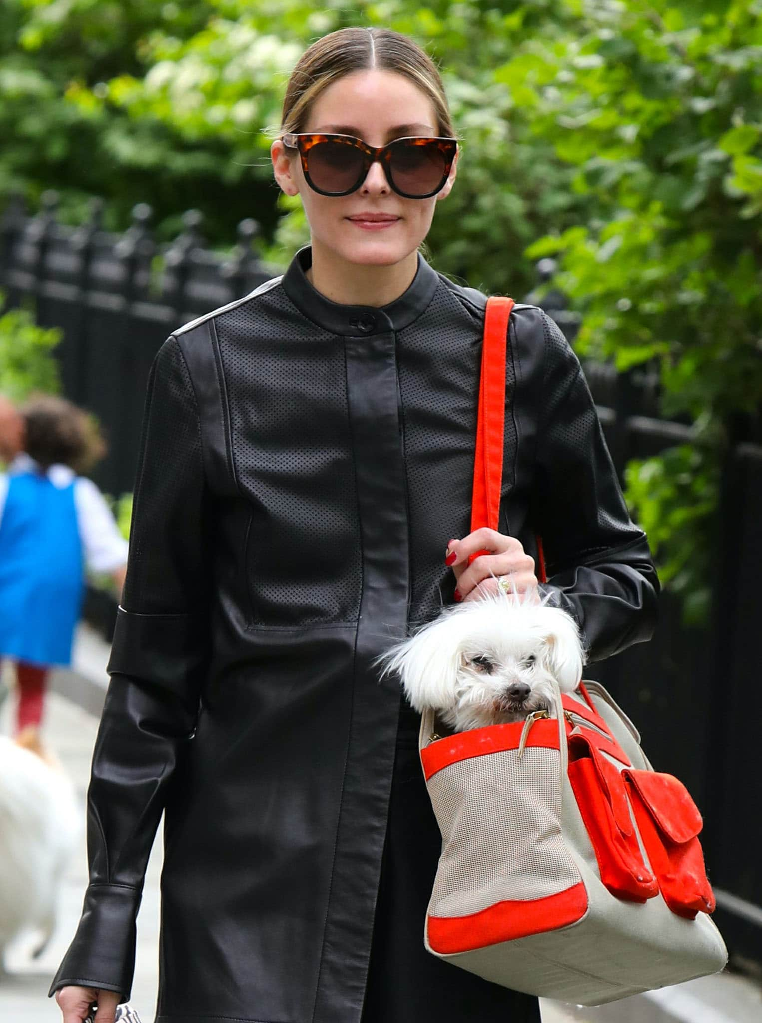 Olivia Palermo pulls her tresses into a neat ponytail as she carries Mr. Butler in a red-and-beige dog carrier
