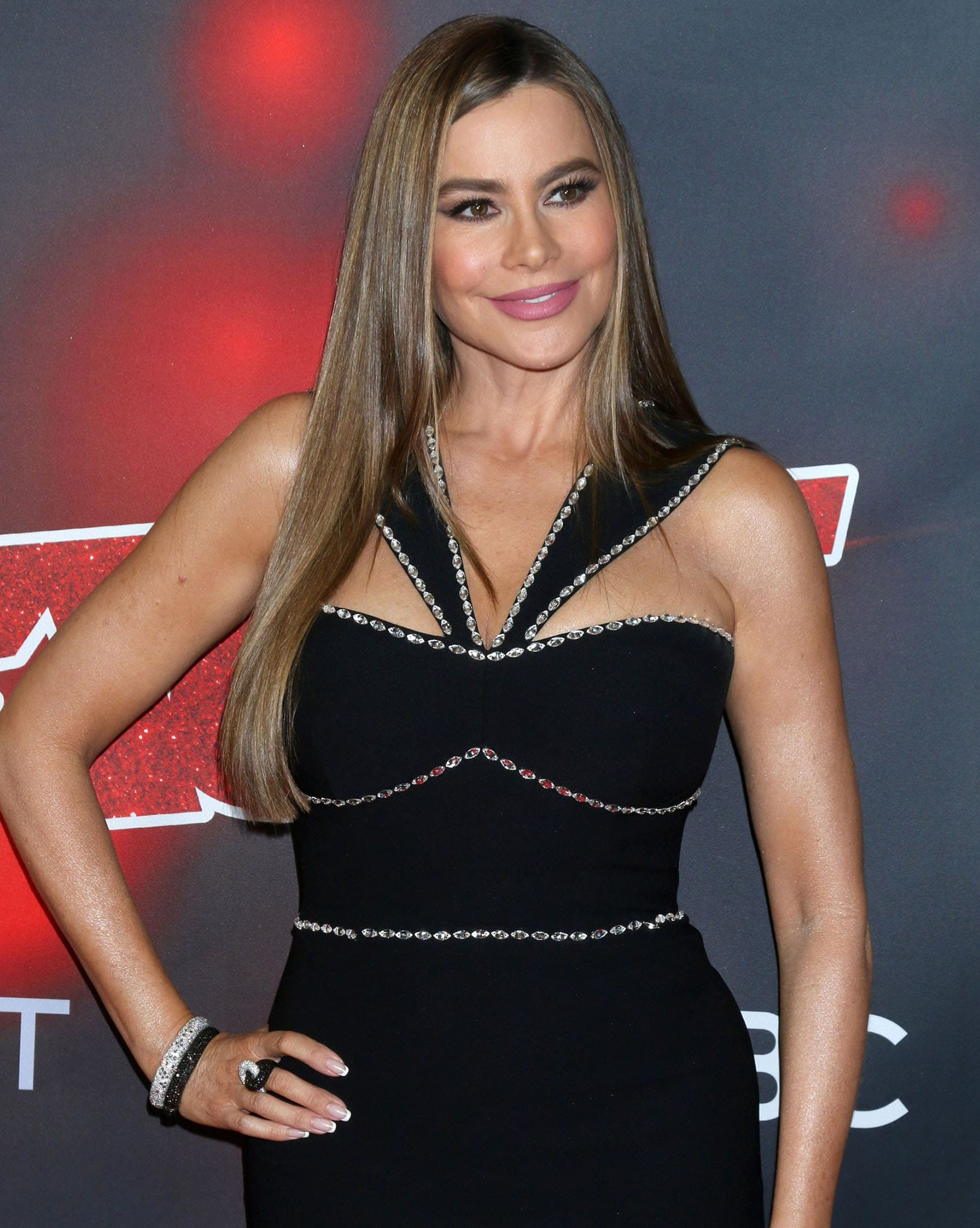 Sofia Vergara styles her hair sleek straight and wears subtle smokey eyeshadow with mauve lipstick